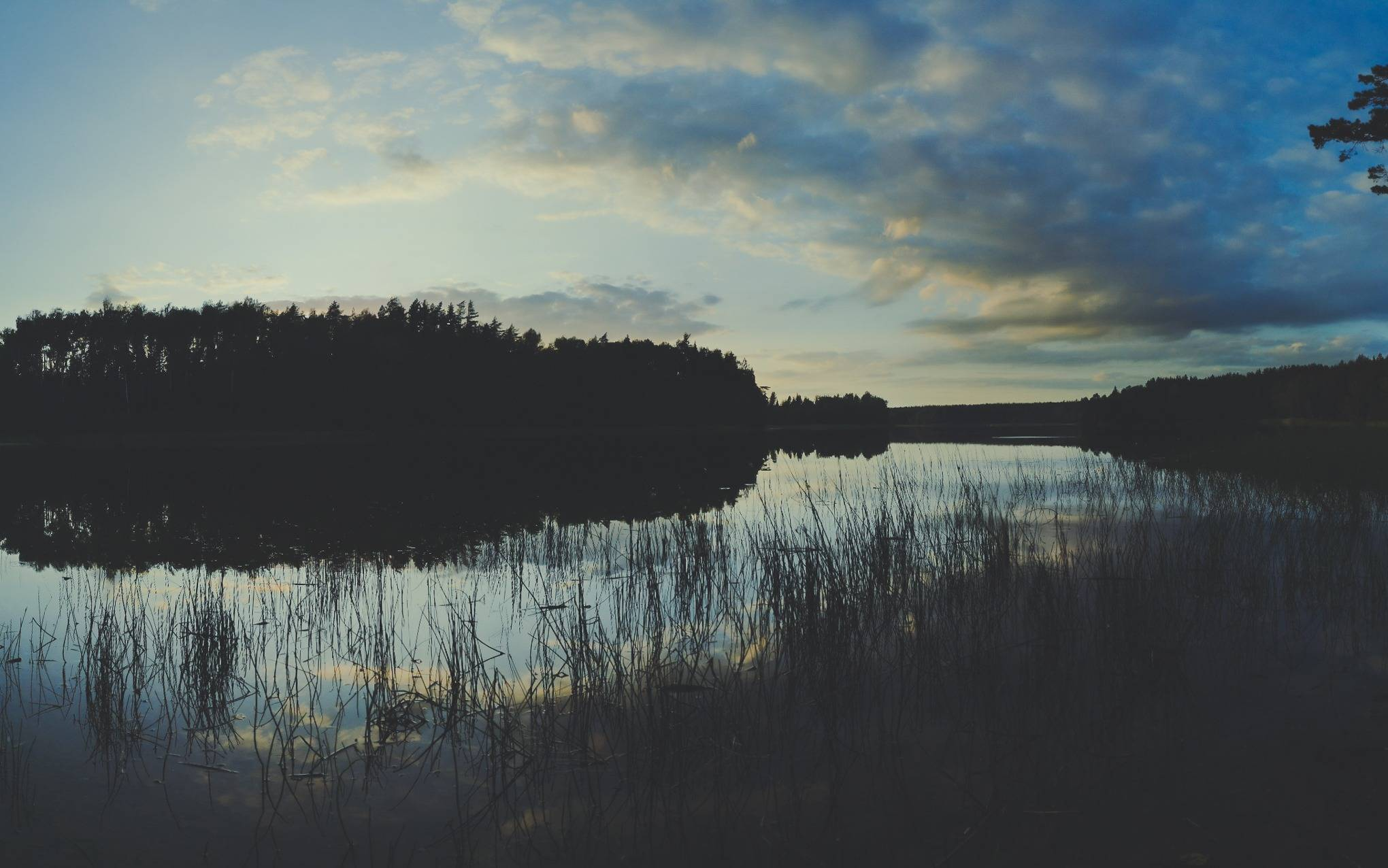 Black Lakajai Lake during an evening in Labanoras Regional Park, Lithuania. Photo Alis Monte [CC BY-SA 4.0], via Connecting the Dots