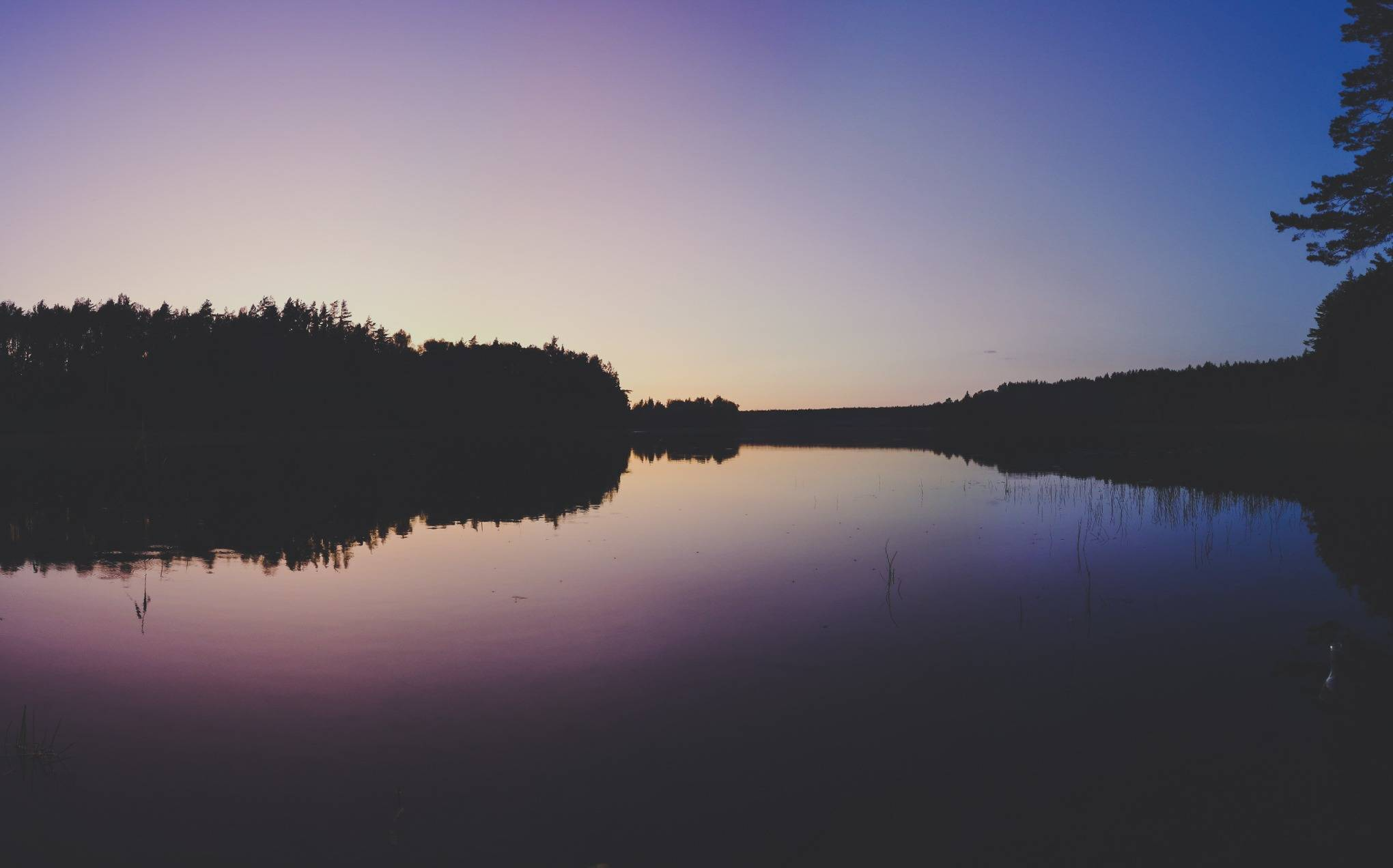Black Lakajai Lake during a night in Labanoras Regional Park, Lithuania. Photo Alis Monte [CC BY-SA 4.0], via Connecting the Dots