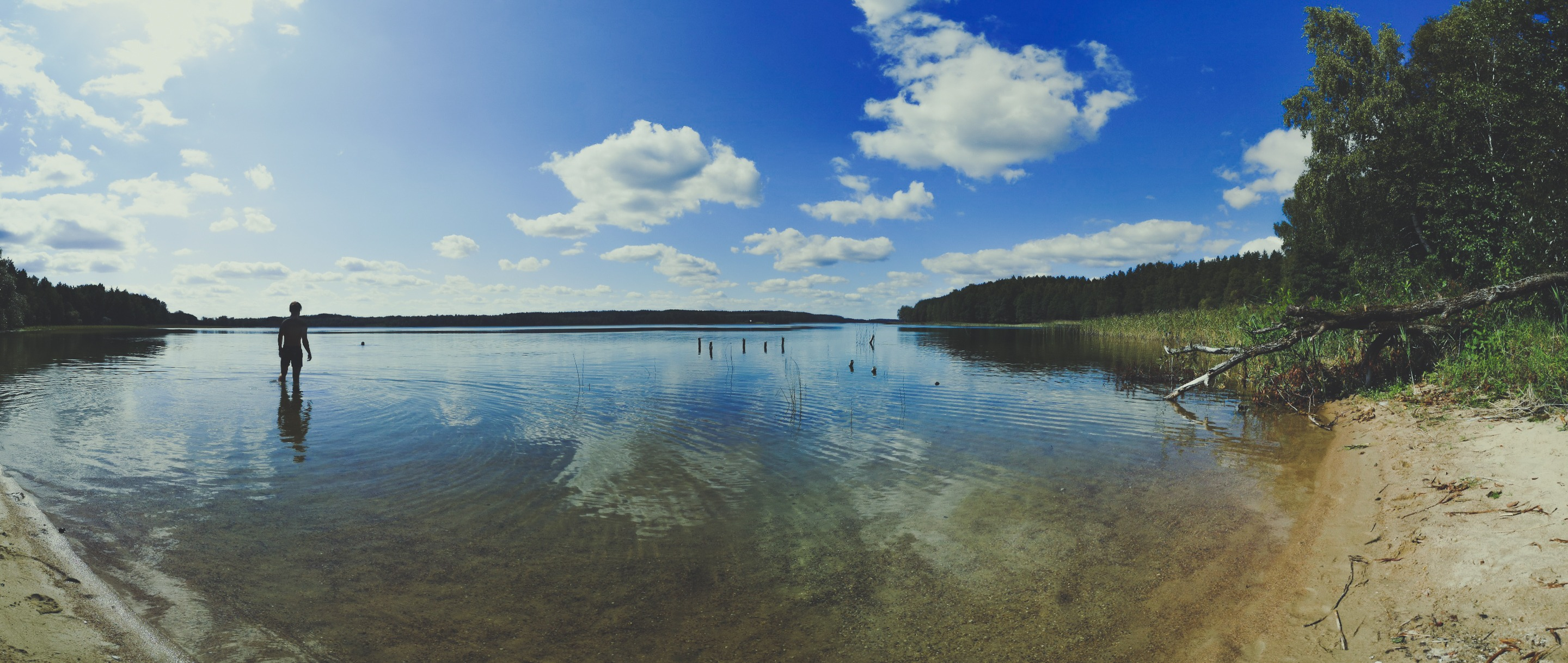 Going for a swim in White Lakajai Lake in Labanoras Regional Park, Lithuania. Photo Alis Monte [CC BY-SA 4.0], via Connecting the Dots