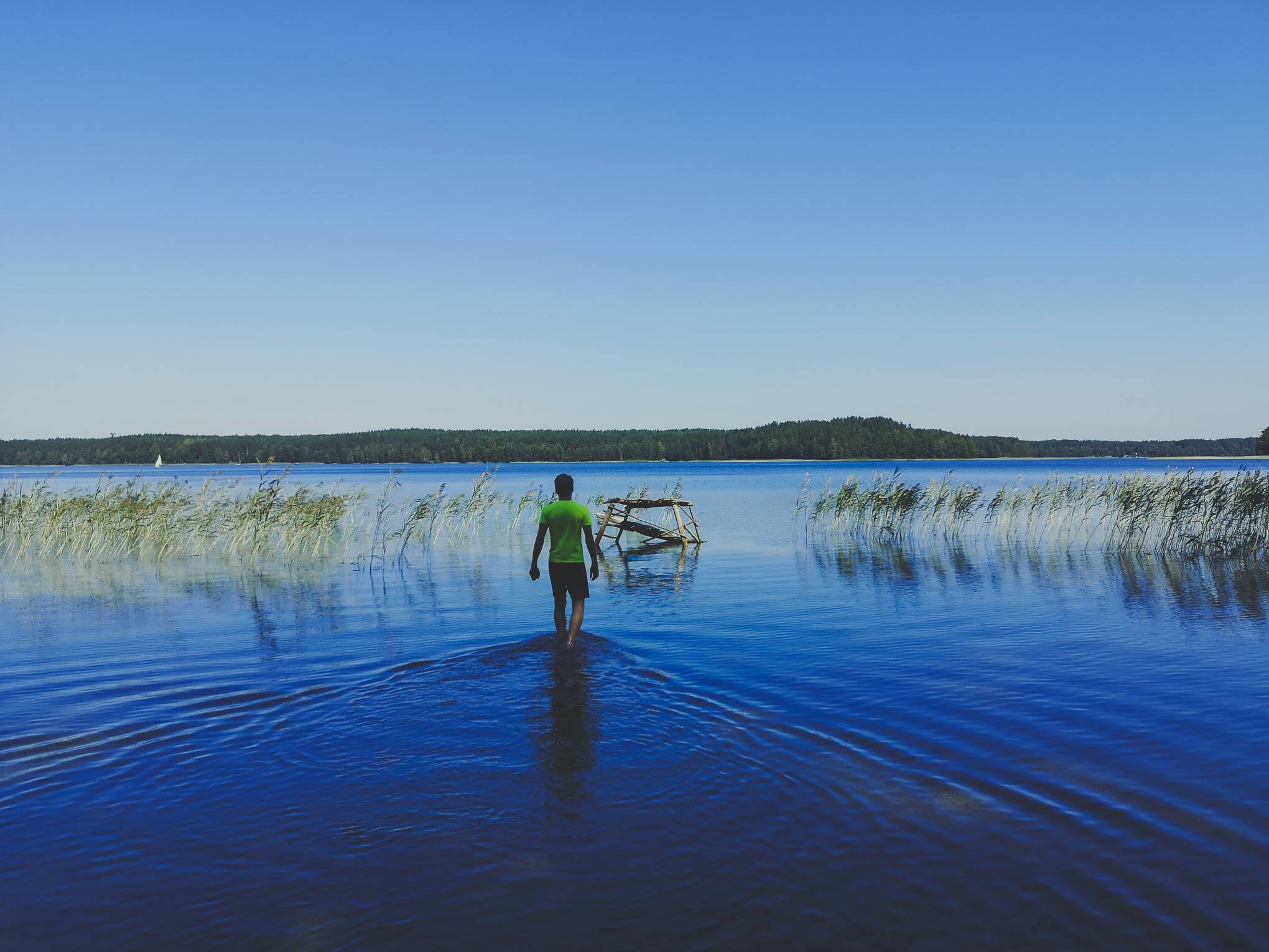 Wading on White Lakajai Lake in Labanoras Regional Park, Lithuania. Photo Alis Monte [CC BY-SA 4.0], via Connecting the Dots