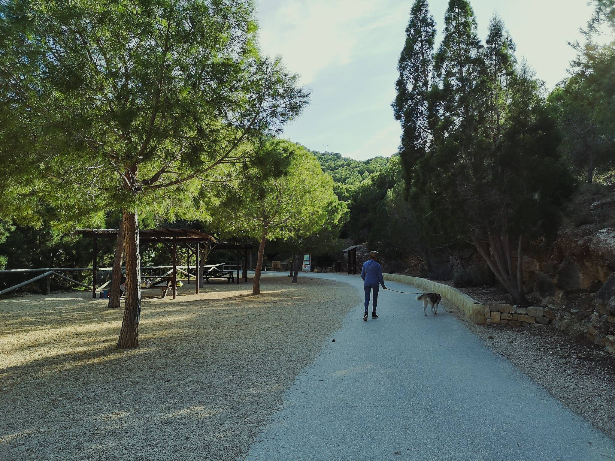Camino del Faro leads to the left toward a picnic area with another access to water. Photo by Alis Monte [CC BY-SA 4.0], via Connecting the Dots