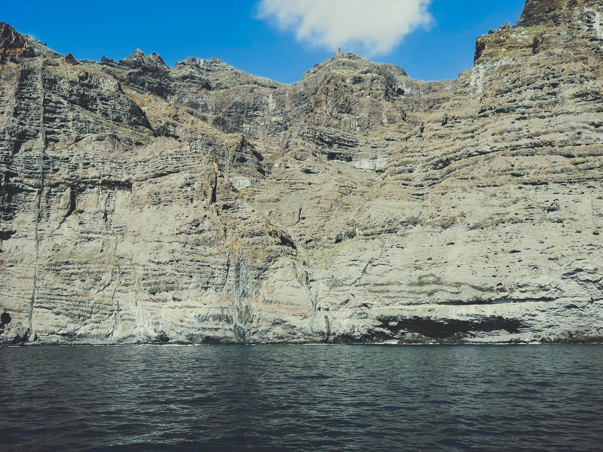 Most the dolphin watching tours will bring you close to Los gigantes for a swim. Don't miss the chance! Photo by Alis Monte [CC BY-SA 4.0], via Connecting the Dots